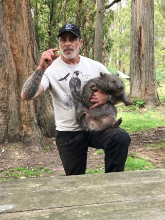 Wombat!